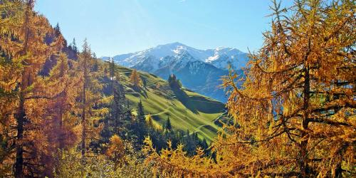 Autumn offers South Tyrol